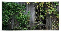 Barn Window Vine Beach Towel