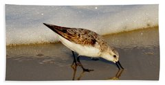Beach Bird Beach Towel