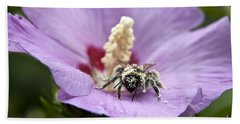 Beach Sheet featuring the photograph Bee Covered In Pollen  by Jeannette Hunt