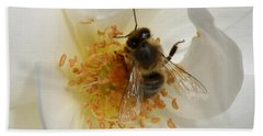 Beach Towel featuring the photograph Bee In A White Rose by Lainie Wrightson