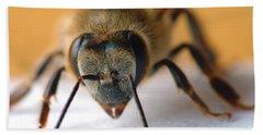 Bee In Macro 4 Beach Towel by Micah May