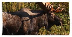 Beach Towel featuring the photograph Big Bull by Doug Lloyd
