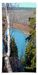 Birch Forest Beach Towel