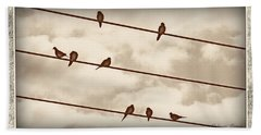 Birds On Wires Beach Towel by Susan Kinney