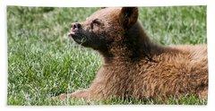 Black Bear Cub I Beach Sheet