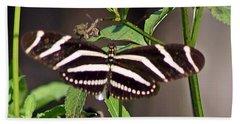 Black Butterfly Beach Towel by Joe Faherty