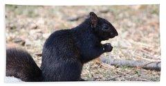 Black Squirrel Of Central Park Beach Towel by Sarah McKoy