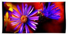 Blooming Asters Beach Towel