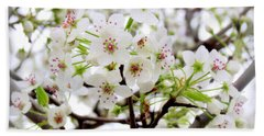 Beach Towel featuring the photograph Blooming Ornamental Tree by Kay Novy
