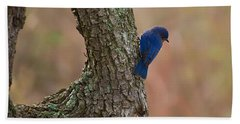 Blue Bird 2 Beach Towel by Dan Wells