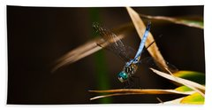 Blue Dasher Dragonfly Beach Towel