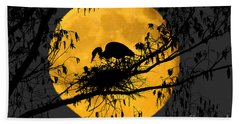 Beach Sheet featuring the photograph Blue Heron On Roost by Dan Friend