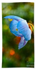 Blue Poppy Dreams Beach Towel