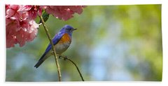 Bluebird In Cherry Tree Beach Sheet