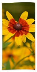 Beach Towel featuring the photograph Blush-eyed Susan by JD Grimes