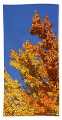 Beach Towel featuring the photograph Brilliant Fall Color And Deep Blue Sky by Mick Anderson