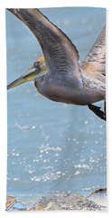 Brown Pelican Beach Towel by Betty LaRue