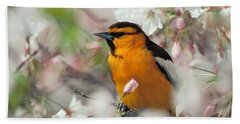 Bullock's Oriole Beach Sheet by Doug Herr