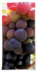 Bunch Of Ripening Grapes Beach Sheet by Anne Mott