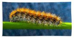 Butterfly Caterpillar Larva On The Stem Beach Sheet
