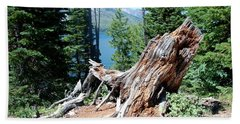 Beach Towel featuring the photograph By Jenny Lake by Dany Lison