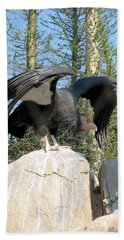 Beach Sheet featuring the photograph California Condor by Carla Parris