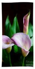 Beach Sheet featuring the photograph Calla Lily by Barbara McMahon