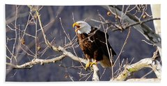 Beach Towel featuring the photograph Calling For His Mate by Randall Branham