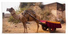 Camel Yoked To A Decorated Cart Meant For Carrying Passengers In India Beach Towel by Ashish Agarwal