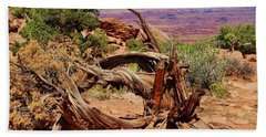 Canyonlands 2 Beach Sheet by Dany Lison
