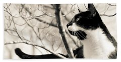 Cat In A Tree In Black And White Beach Towel