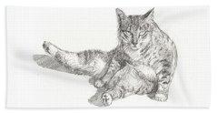 Cat Sitting Beach Sheet