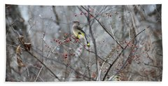 Cedar Wax Wing 3 Beach Towel by David Arment