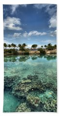 Chankanaab Lagoon Beach Towel