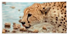 Cheetah Headshot Beach Towel by Darcy Michaelchuk