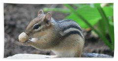 Chipmunk Beach Sheet