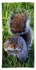 City Squirrel Beach Towel