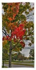 Beach Towel featuring the photograph Cold Autumn Breeze  by Michael Frank Jr