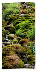 Beach Towel featuring the photograph Colorado 3 by Deniece Platt
