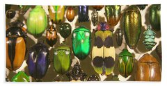 Colorful Insects Beach Sheet by Brooke T Ryan