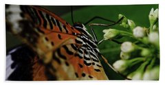Common Lacewing Beach Towel