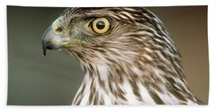 Beach Sheet featuring the photograph Cooper's Hawk by Doug Herr