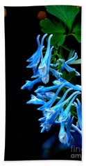 Corydalis  Beach Towel by Tanya  Searcy
