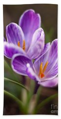 Crocus Spring Beach Towel