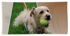 Beach Towel featuring the photograph Cruz My Ball by Thomas Woolworth