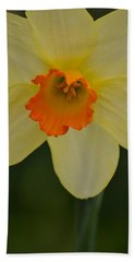 Daffodilicious Beach Towel by JD Grimes