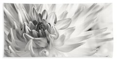 Dahlia Flower 02 Beach Towel