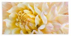 Dahlia Flower 08 Beach Towel