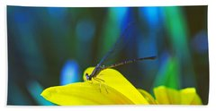 Beach Sheet featuring the photograph Daisy And Dragonfly by Kay Lovingood
