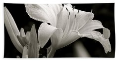 Daylily Study In Bw Iv Beach Towel